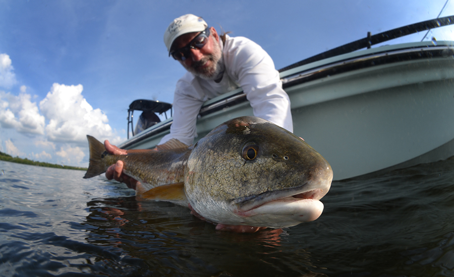 Fly Fishing Charlotte Harbor Guide