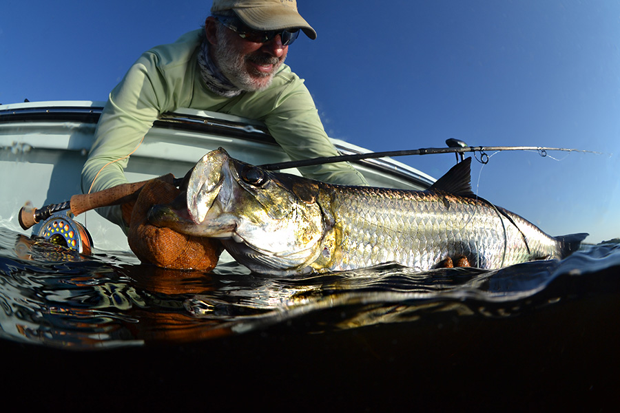 Fly Fishing guide Charlotte Harbor