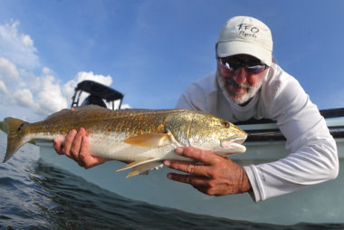 fly fishing port charlotte harbor