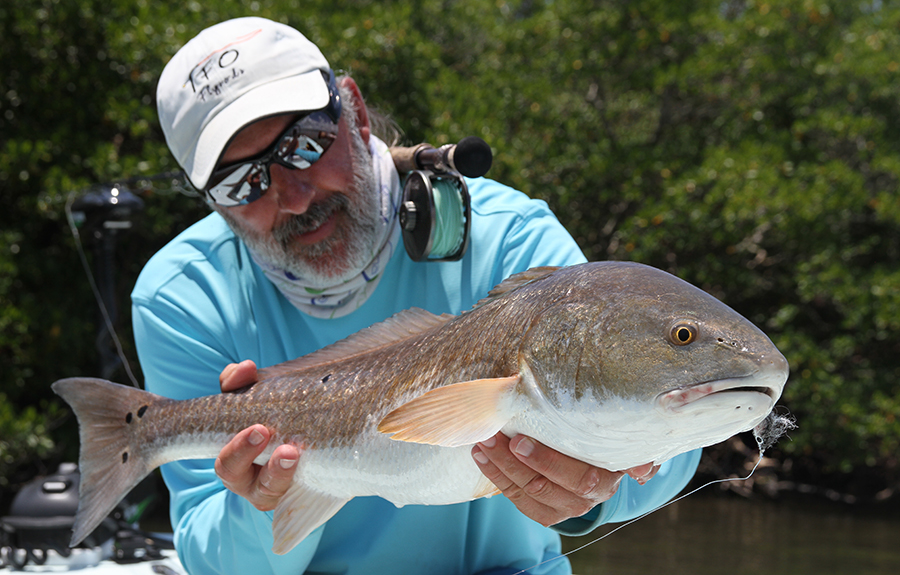 Fly FIshing Charlotte Harbor